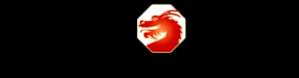 Jackiechanadventures_logo